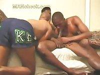 Black gays oral sex