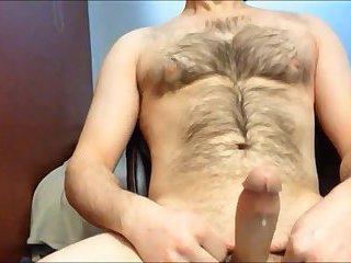 Amateur Bear Beating Off