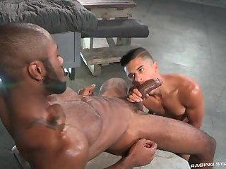 Black Bodybuilder Fucking Sexy Twink